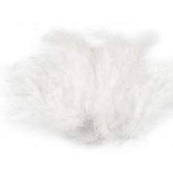 Biele pštrosie perie